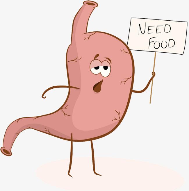 肠胃卡通形象图片