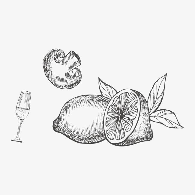 手绘柠檬香槟香菇线稿png素材-90设计