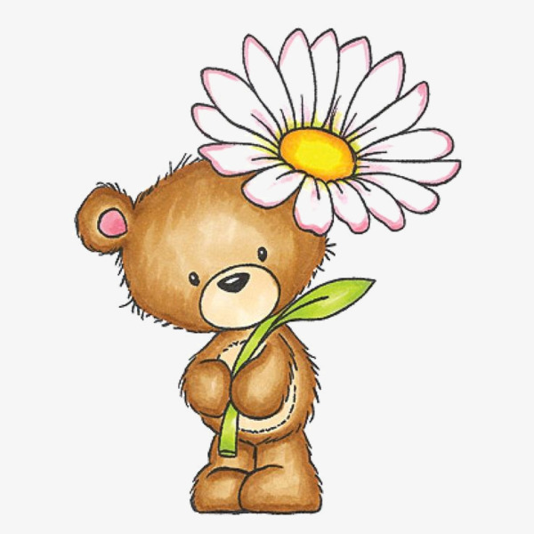 可爱的小熊手绘图