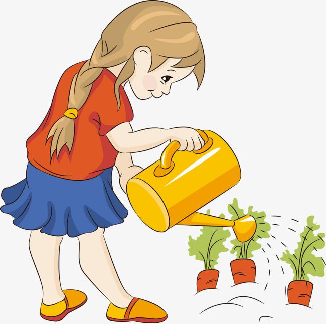 种花的步骤画出来