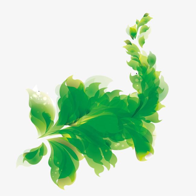 图片 > 【png】 精美绿色树叶  分类:手绘动漫 类目:其他 格式:png