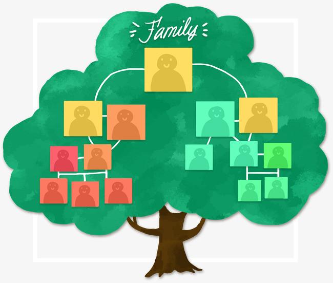 手绘家庭树结构