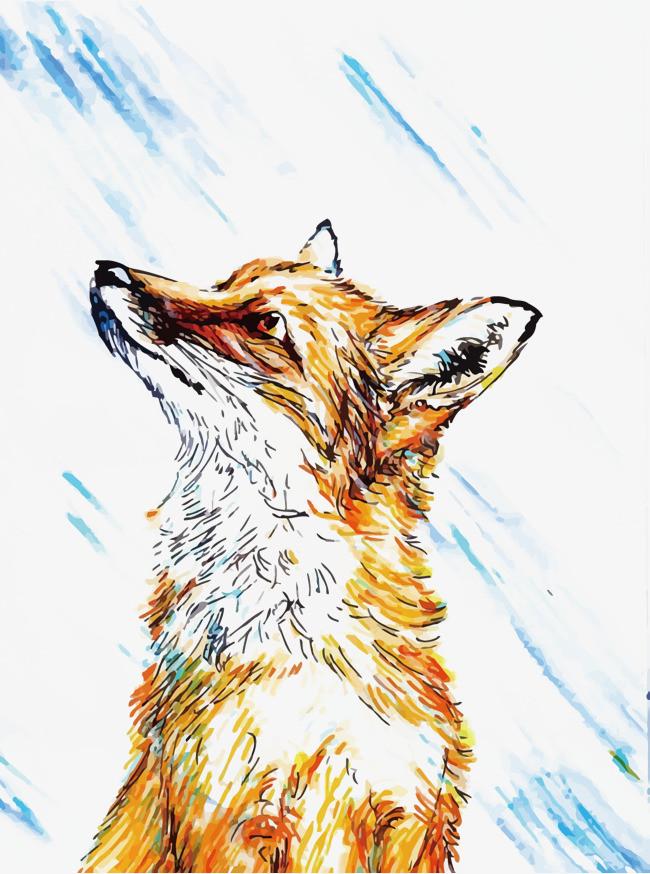矢量手绘狐狸