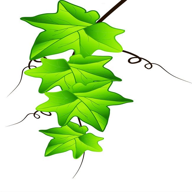 绿色手绘高清大图