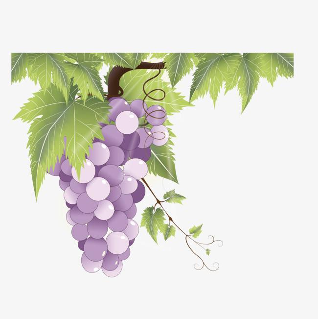 手绘唯美 空灵 紫色