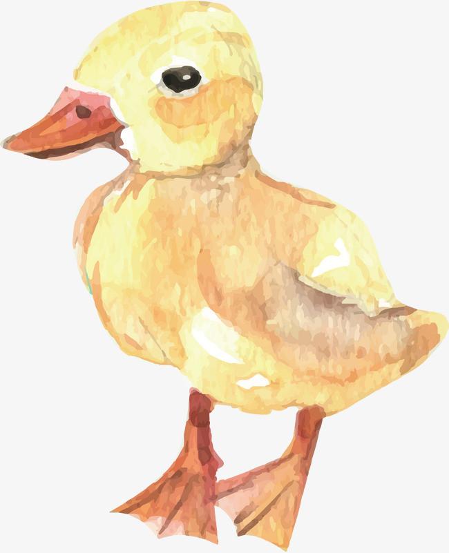 本次手绘小黄鸭作品为设计师创作,格式为png,编号为 18039902,大小0.