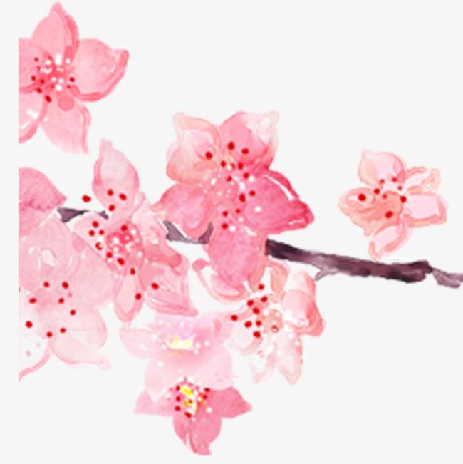 粉色手绘水彩樱花