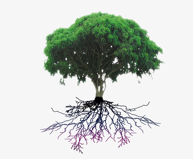 大树树根创意画