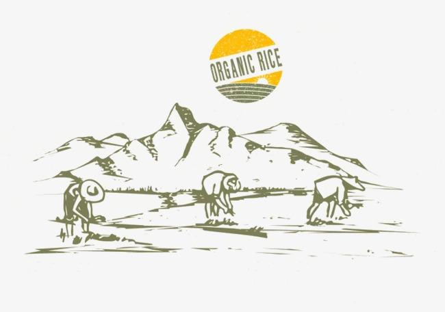 文艺手绘素描农民耕种