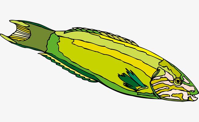 鱼带皇冠 手绘 ai