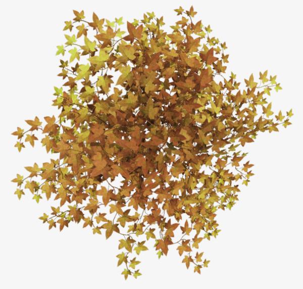 黄色简约树丛装饰图案png素材-90设计图片