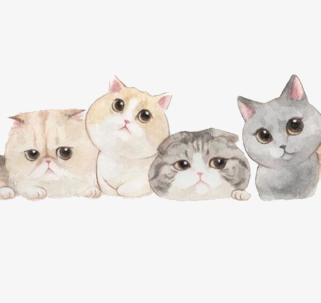 壁纸 动物 狗 狗狗 猫 猫咪 小猫 桌面 650_615