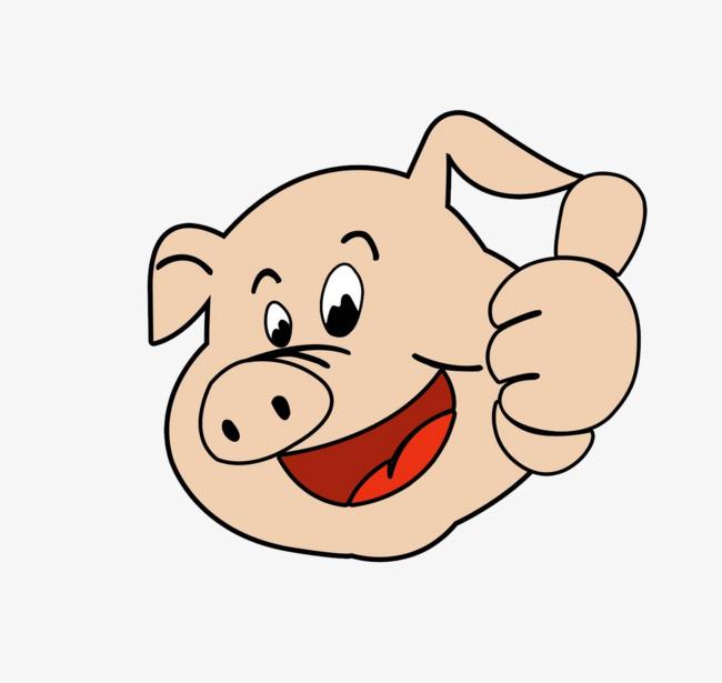 伸着大拇指的土猪猪头素材图片免费下载 高清卡通手绘png 千库网 图片编号7401237