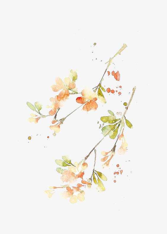 手绘古风树叶元素