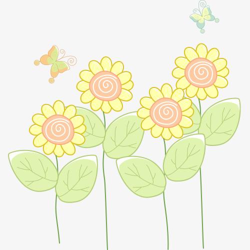 手绘向日葵花朵图片