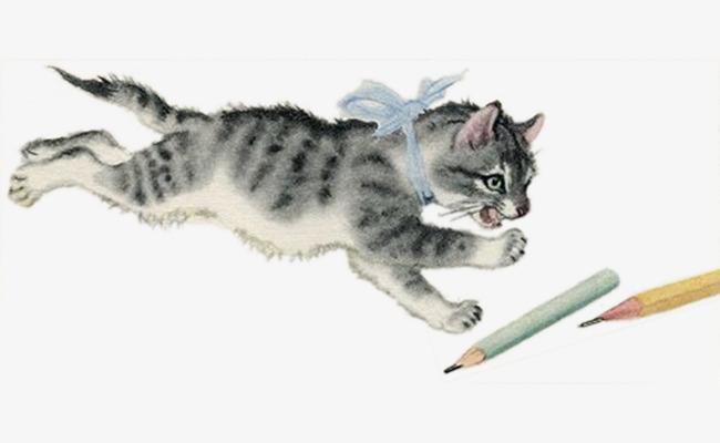 手绘水彩猫抓铅笔
