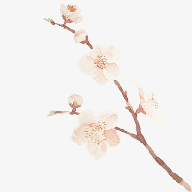 手绘水彩桃花枝装饰素材