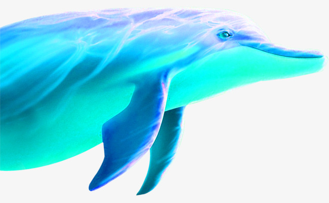 蓝色手绘海豚装饰图案