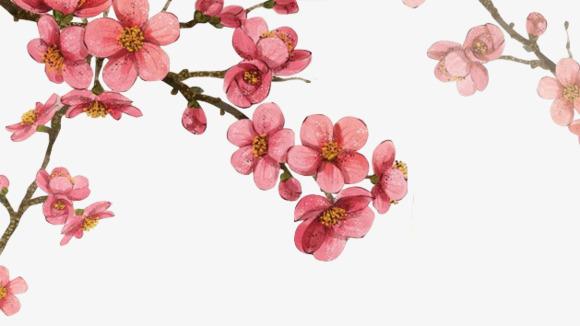 手绘水彩桃花花枝【高清png素材】-90设计