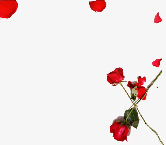 红色玫瑰花花瓣装饰图案【高清装饰元素png素材】-90