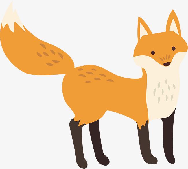 春天的狐狸