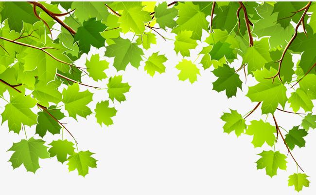树叶 叶子 绿色 春天             此素材是90设计网官方设计出品,均