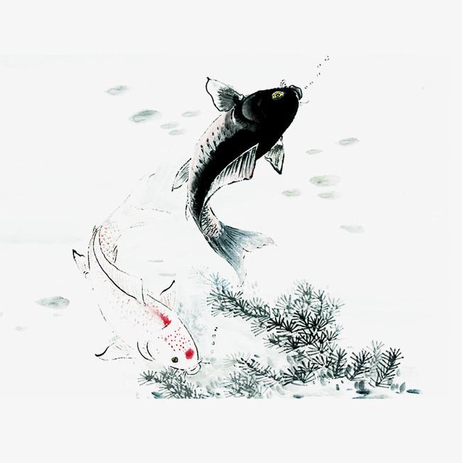 手绘锦鲤水墨画