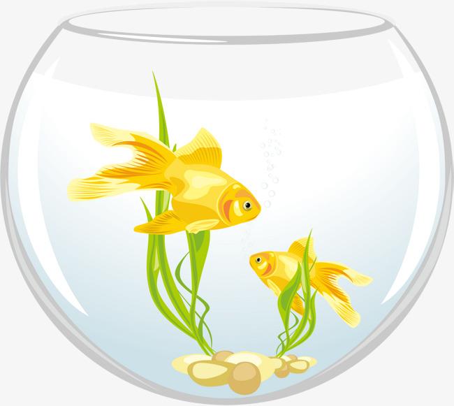 矢量圆形鱼缸