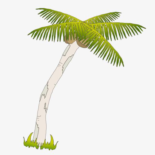 手绘卡通椰树图片