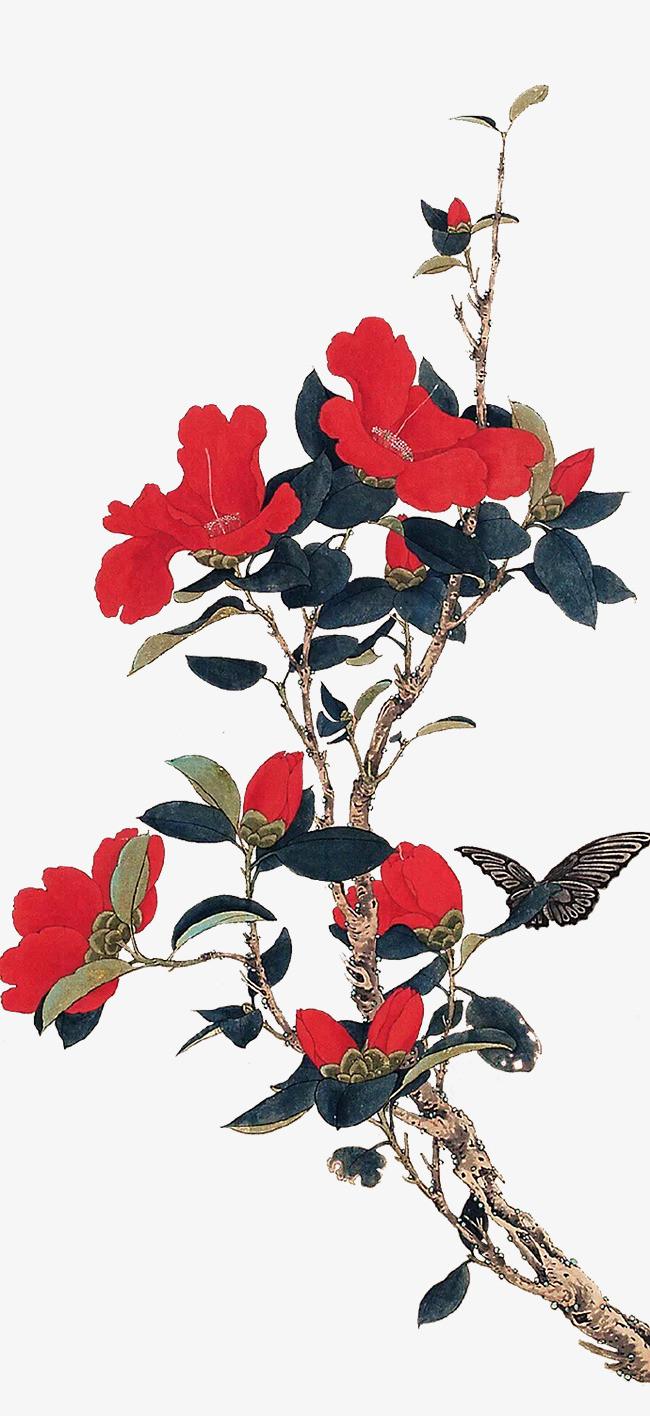 国画工笔鲜艳红色茶花图片