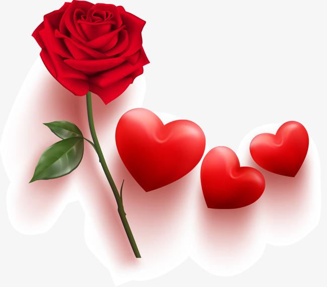 玫瑰花矢量图