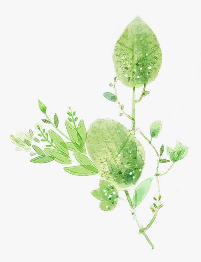 手绘植物枝叶装饰图案