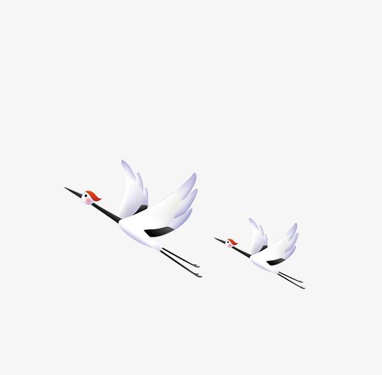 手绘白鹤装饰图案
