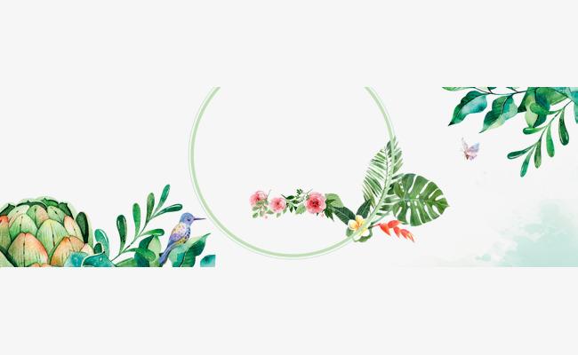 小清新手绘花草女装海报边框