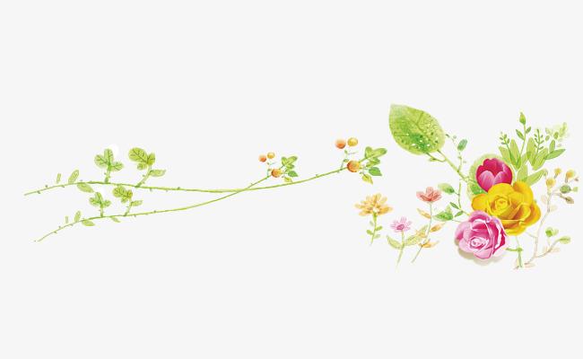手绘藤蔓花朵装饰图案