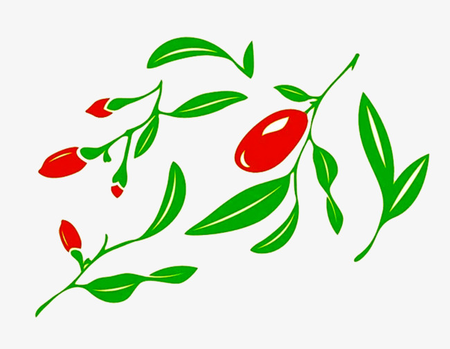 卡通红枣和枣叶图片素材