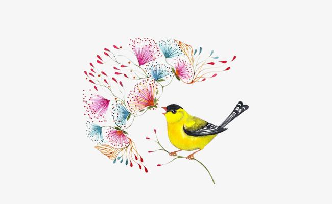 手绘水彩小鸟花卉