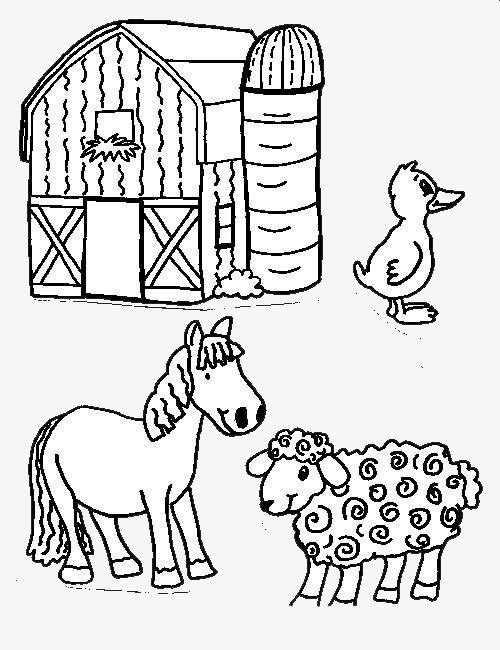 小动物的家