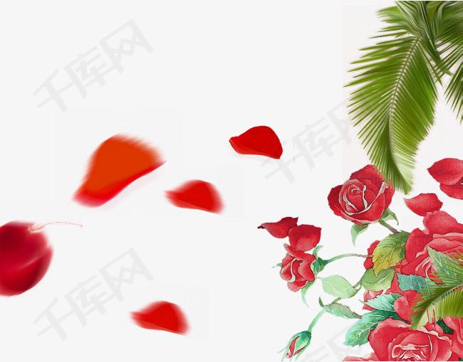 水彩玫瑰花花瓣棕树叶装饰图片