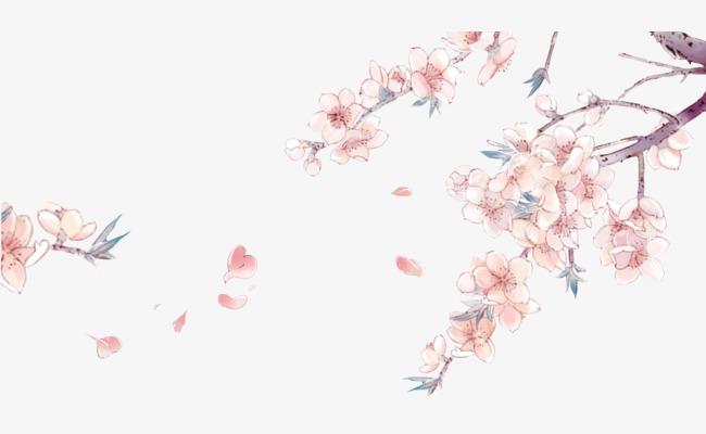 手绘樱花花枝免抠素材图片免费下载 高清卡通手绘png 千库网 图片编号7748231