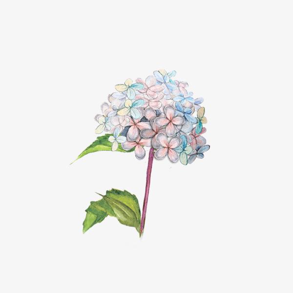 卡通手绘鲜花水彩叶子此素材是90设计网方设计