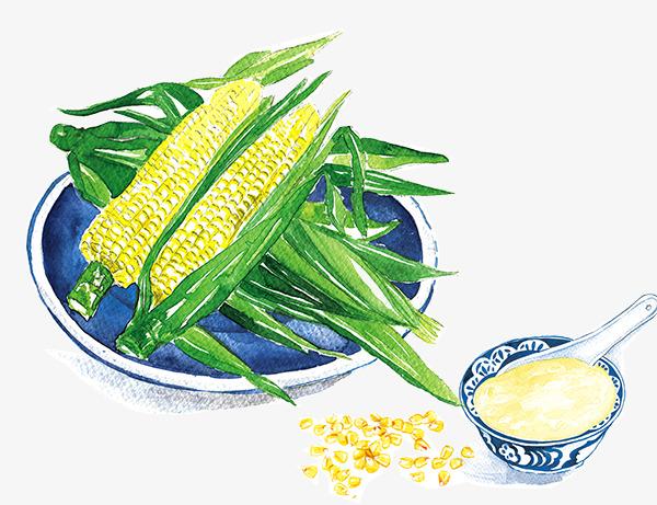 手绘水彩美食玉米