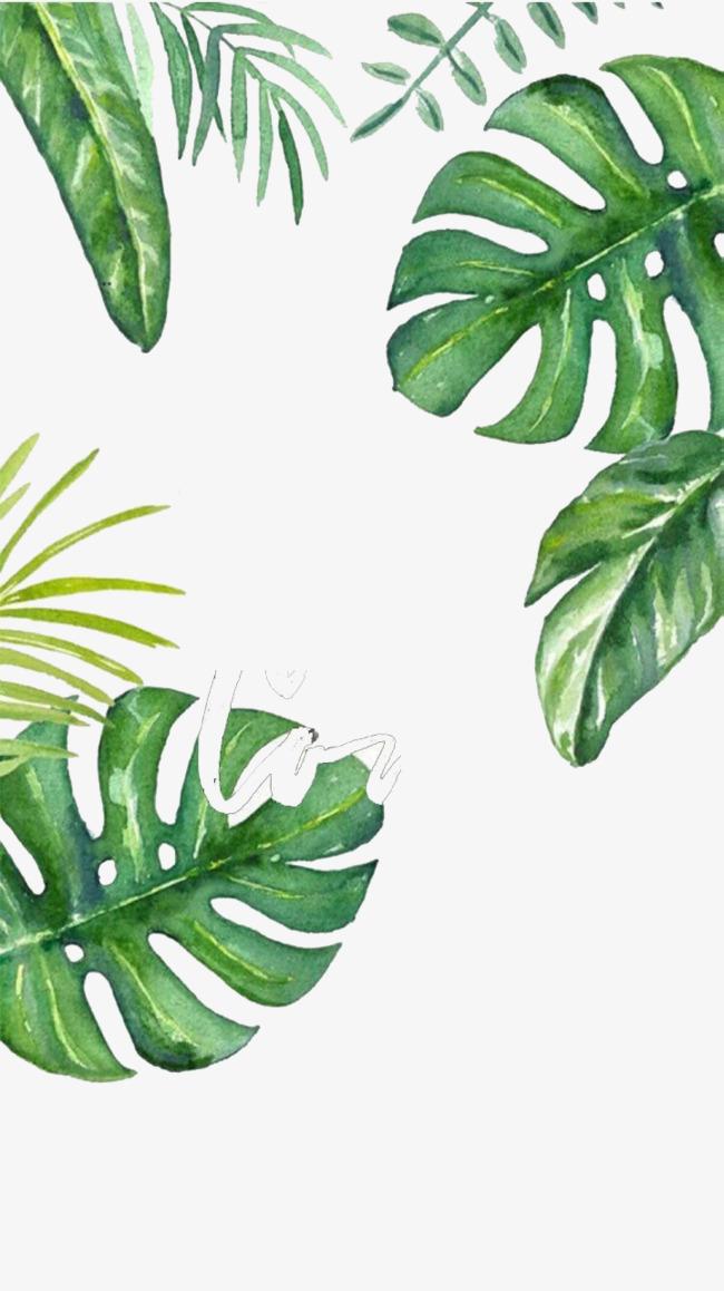 背景 壁纸 绿色 绿叶 设计 矢量 矢量图 树叶 素材 植物 桌面 650