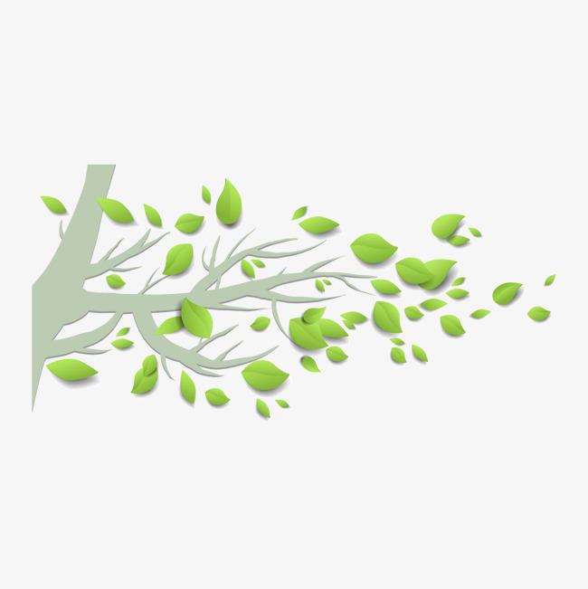 春天清新树叶树图片