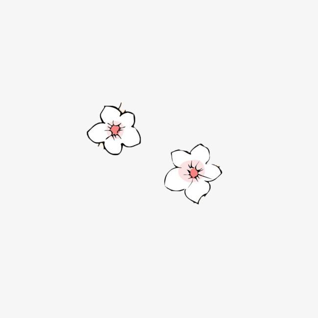 手绘梨花花瓣图片素材