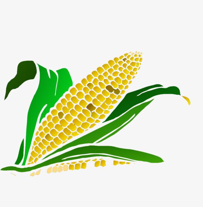 图片 卡通背景 > 【png】 卡通玉米  分类:手绘动漫 类目:其他 格式:p