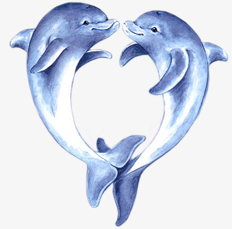 手绘水彩可爱海豚