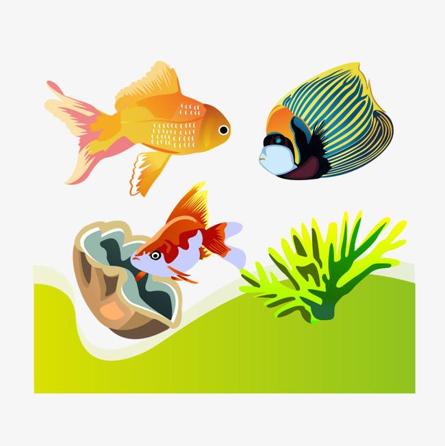 矢量海底鱼png素材-90设计图片