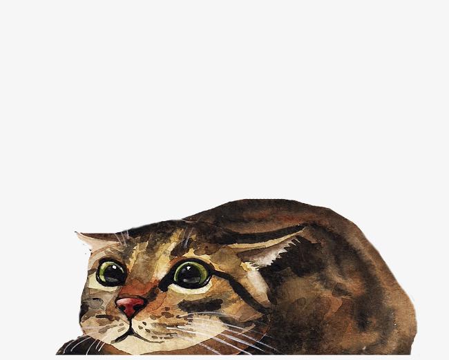 手绘可爱动物小猫咪