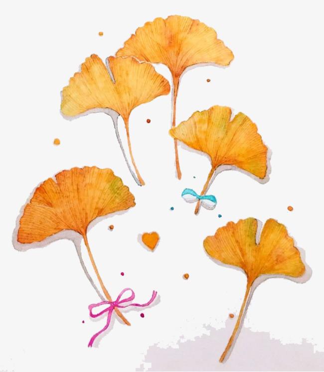 水彩银杏叶图片